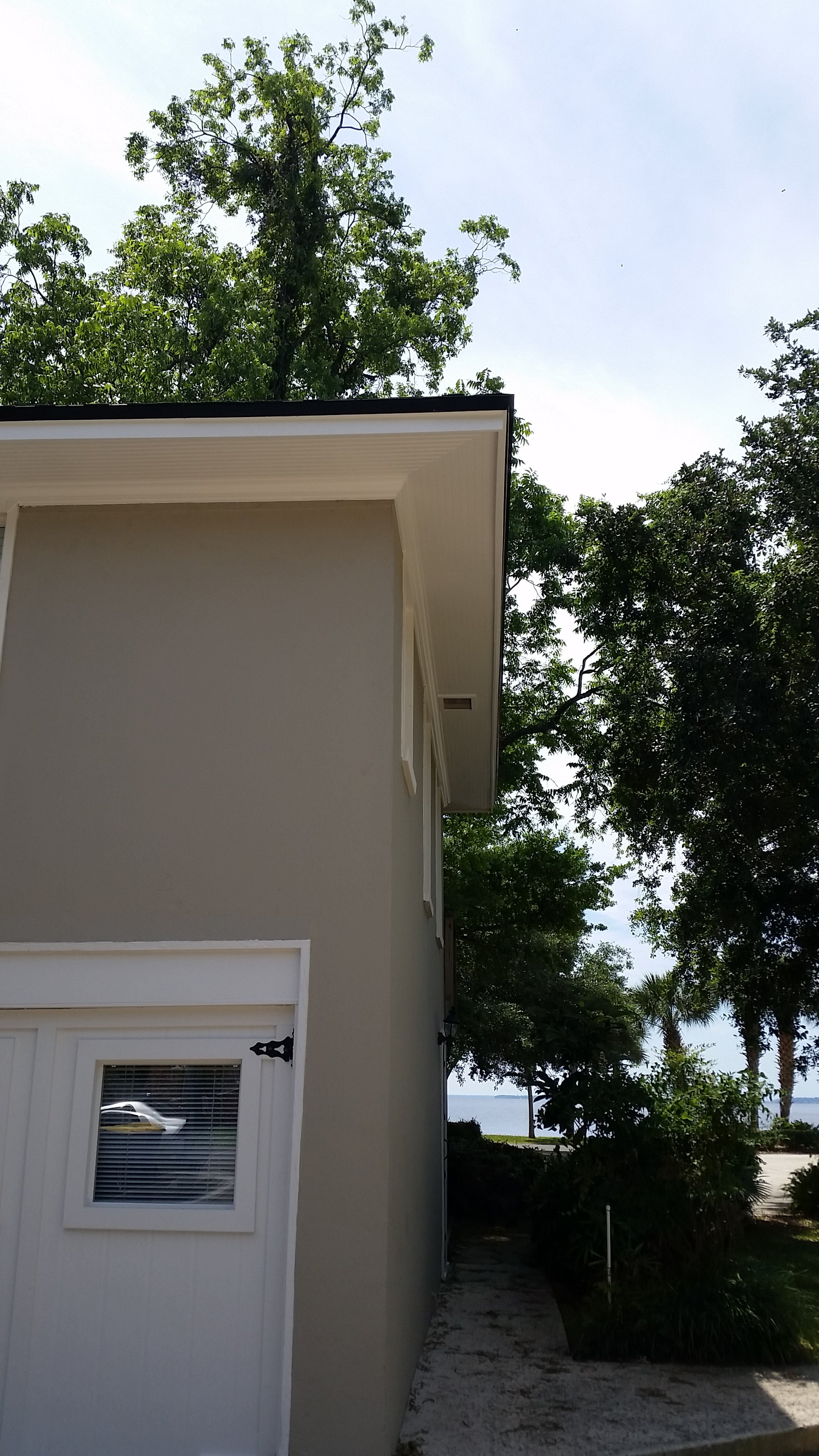 Carpentry Repair And Exterior Repaint In Avondale
