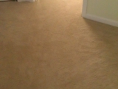 Mandarin Carpet Flooring Replacement